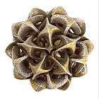 Rhombic Triacontahedron IV